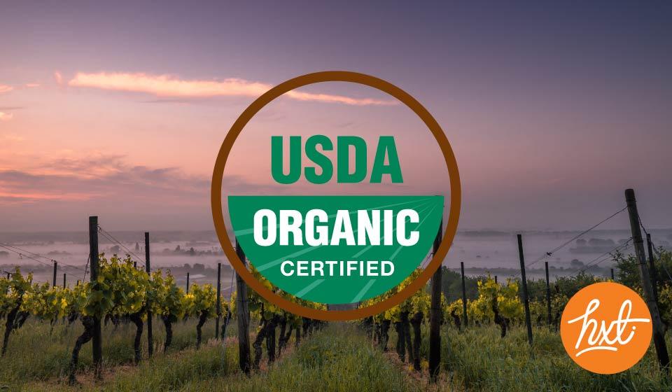 UDSA Certification - Miami Branding Agency